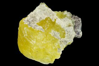"Buy 1.4"" Lemon-Yellow Brucite - Balochistan, Pakistan - #155242"