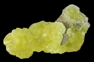 Brucite - Fossils For Sale - #155250