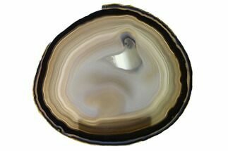 "5.9"" Polished Brazilian Agate Slice For Sale, #156290"