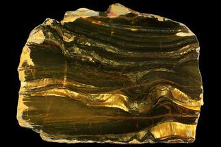 "7.8"" Polished ""Packsaddle"" Tiger Eye Slab - Western Australia For Sale, #158159"