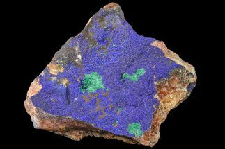 "5.1"" Azurite and Malachite Association on Matrix - Morocco For Sale, #159317"