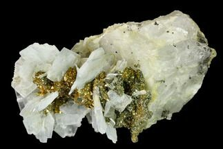 "3.2"" Bladed Barite Crystal Cluster with Quartz & Marcasite - Morocco For Sale, #160133"