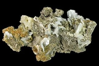 Barite & Pyrite - Fossils For Sale - #160140