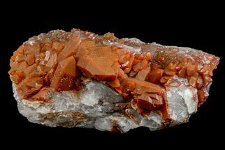 "4.9"" Natural Red Quartz Crystal Cluster - Morocco For Sale, #161078"