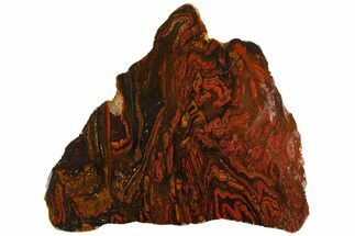 "10.6"" Polished Tiger Iron ""Stromatolite"" Slab - 3.02 Billion Years For Sale, #161891"