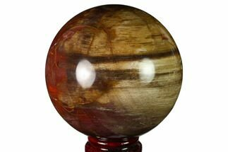 "Buy 3.6"" Colorful Petrified Wood Sphere - Madagascar - #163363"
