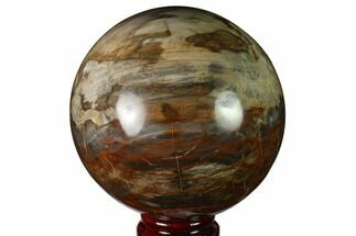 "3.9"" Colorful Petrified Wood Sphere - Madagascar For Sale, #163367"