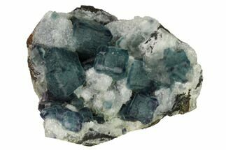 "Buy 3.7"" Pristine, Multicolored Fluorite Crystals on Quartz - China - #164035"