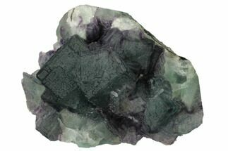 Fluorite & Quartz - Fossils For Sale - #164037