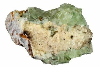 "Buy 4.8"" Green Cubic Fluorite Crystal Cluster on Quartz - Morocco - #164557"