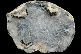 Quartz  - Fossils For Sale - #165543