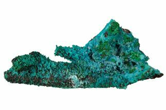"2.35"" Chrysocolla and Malachite Pseudomorph - Lupoto Mine, Congo For Sale, #167666"