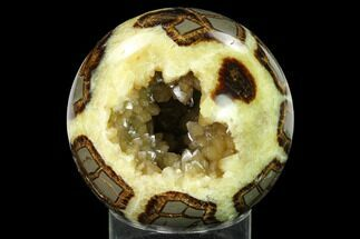 "3.9"" Crystal Filled, Polished Septarian Sphere - Utah For Sale, #167876"