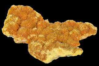 "Buy 3.5"" Vibrant Orange Orpiment Formation - Peru - #169084"