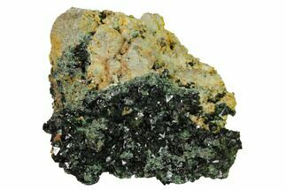 "Buy 1.7"" Deep-Green Libethenite Crystal Cluster  - #169810"