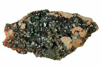 "Buy 2.8"" Deep-Green Libethenite Crystal Cluster - #169822"