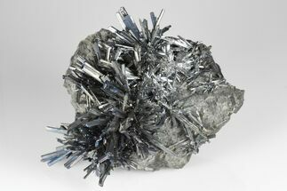 Buy Metallic Stibnite Crystal Sprays On Matrix - Xikuangshan Mine, China - #175927
