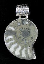 Pyritized Ammonite Fossil Pendant - Sterling Silver For Sale, #21008