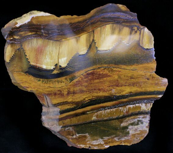 Banded Tiger Iron Stromatolite - Mt. Brockman (2.7 Billion Years)