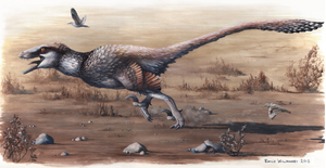 Newly Described Dakotaraptor: A Giant Raptor From The Hell Creek Formation