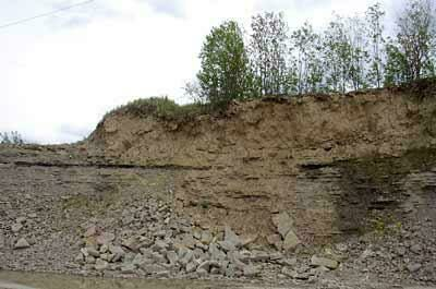 Photo of the Putilovo quarry near St. Petersburg Russia where this trilobite was found.