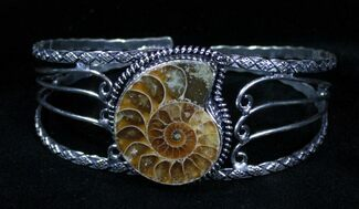Beautiful Ammonite Fossil Bracelet For Sale, #3362
