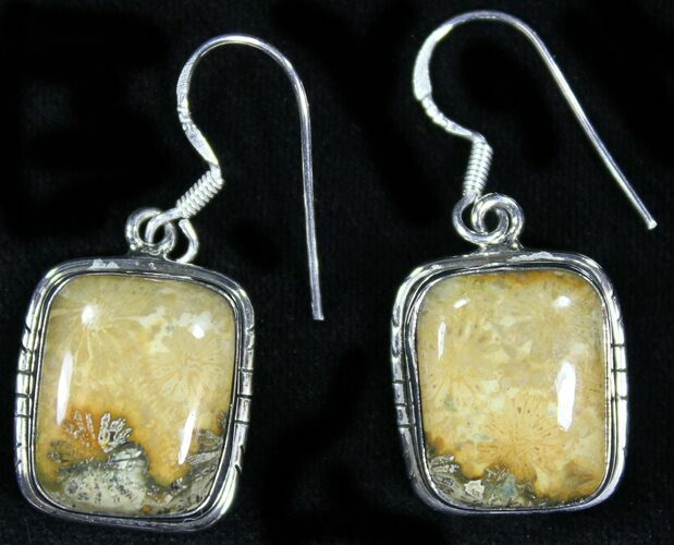 Beautiful Fossil Coral Sunburst Earrings - Sterling Silver