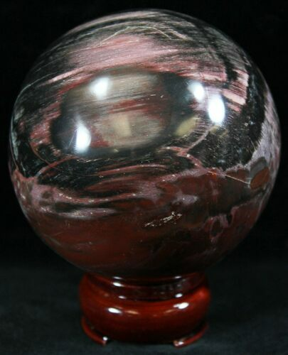 "3.1"" Colorful Petrified Wood Sphere"