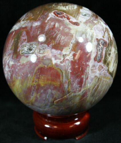 "3"" Colorful Petrified Wood Sphere"