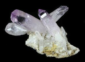 "Buy 1.09"" Amethyst on Matrix - Las Vigas, Mexico  - #31489"