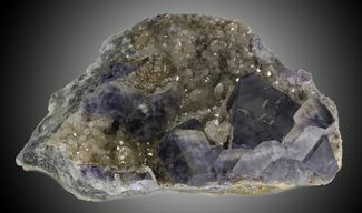 Fluorite - Fossils For Sale - #31557