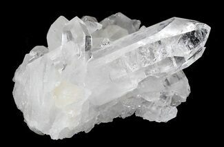 "Bargain 1.9"" Quartz Crystal Cluster - Arkansas For Sale, #30434"