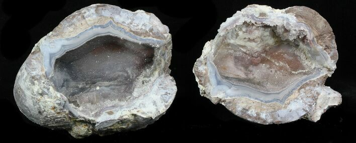 "3.6"" Crystal Filled Dugway Geode"
