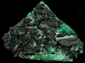 "2.75"" Fibrous Malachite Crystals - Congo For Sale, #33473"