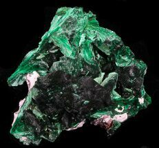 "Buy 1.35"" Fibrous Malachite Crystals - Congo - #33481"