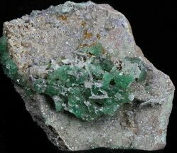 "Buy 2.75"" Green Fluorite On Druzy Quartz - Colorado - #33358"