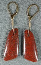 Vibrant, Red Agatized Dinosaur Gembone Earrings For Sale, #33832