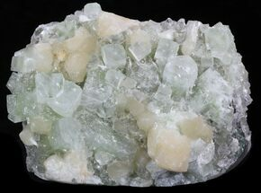 "8.2"" Stilbite & Apophyllite Crystal Cluster - India For Sale, #33923"