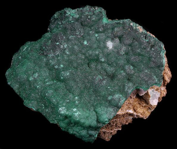 "3.3"" Dark Green Chrysocolla Crystals - Zaire"