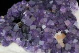 "16"" Purple, Cubic Fluorite Plate - Cave-in-Rock (Reduced Price) - #35710-3"