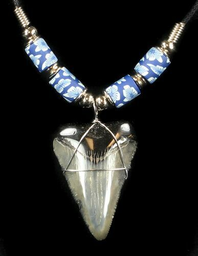 "1.6"" Polished Megalodon Tooth Necklace"