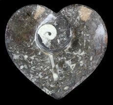 "6"" Heart Shaped Fossil Goniatite Dish For Sale, #36293"