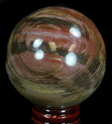 "2.85"" Colorful Petrified Wood Sphere"