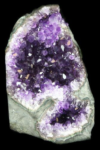 "6.6"" Dark Purple Amethyst Cut Base Cluster - Uruguay"