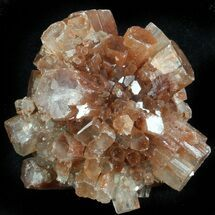 Aragonite - Fossils For Sale - #37308
