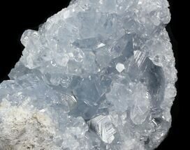 "2.8"" Blue Celestite Crystal Geode - Madagascar For Sale, #31253"