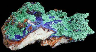 Malachite with Azurite - Fossils For Sale - #38583
