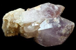 "Buy 2.0"" Quartz var. Amethyst Crystal Cluster - Pakistan - #38662"
