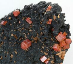 Vanadinite  - Fossils For Sale - #38499