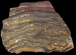 Tiger Iron Stromatolite - Fossils For Sale - #38919